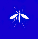 Услуга травли комаров в Ростове цена