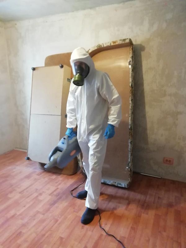 Уничтожение клопов в квартине цена в Ростове