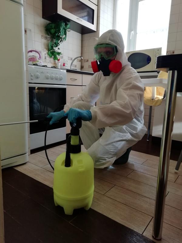 Услуги обработки квартиры от тараканов - цены в Ростове