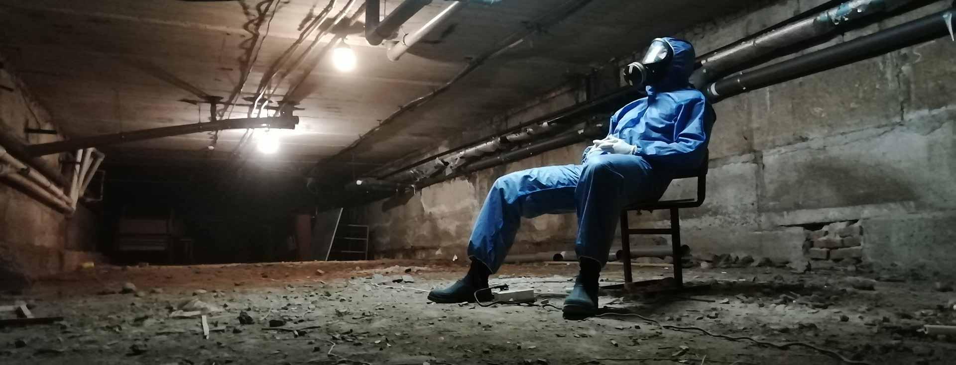 Обработка помещений и подвалов от насекомых в Ростове