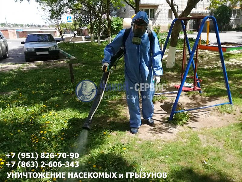Обработка от клещей в Ростове от Чикой-Сервис - картинка