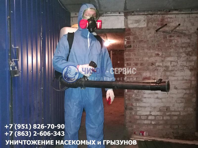 Уничтожение блох в Ростове