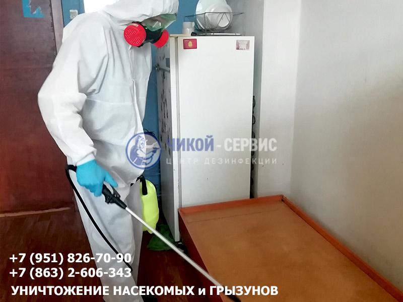 Уничтожение клопов в Ростове от Чикой-Сервис - фотография