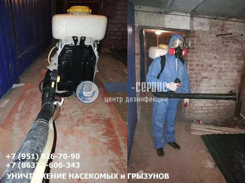Борьба с блохами в Ростовской области