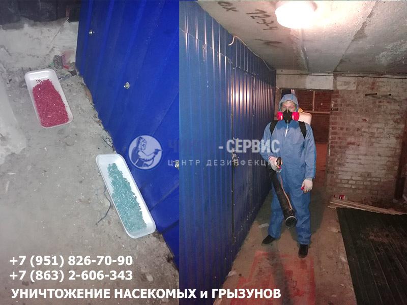 Уничтожение грызунов (дератизация) в Ростове-на-Дону - Чикой-Сервис