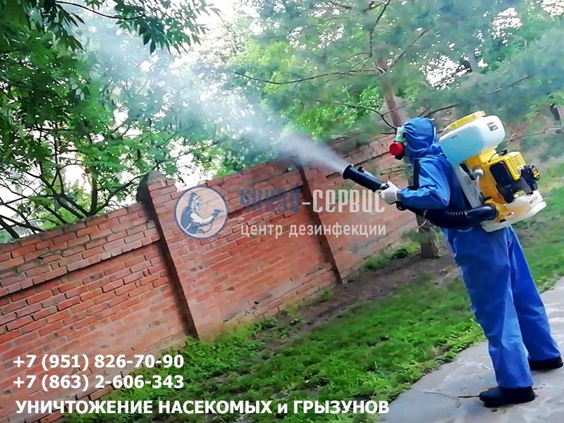 Дезинсекция комаров в Ростове