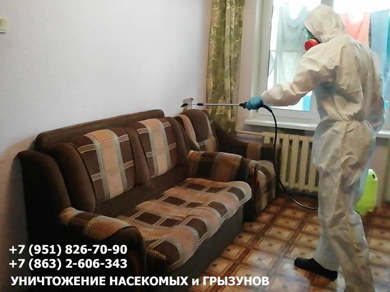 Потравить клопов в Ростовской области