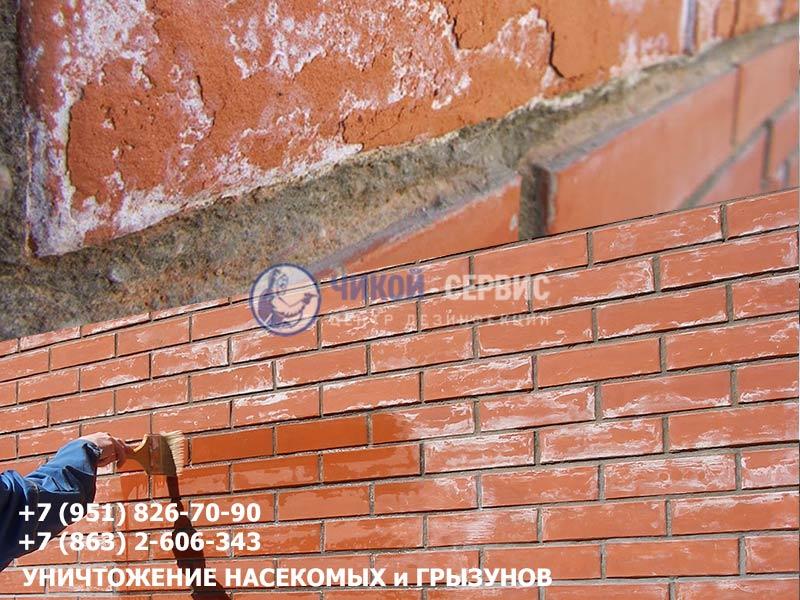 Удаление высолов на кирпиче  Ростове-на-Дону центром дезинфекции Чикой-Сервис