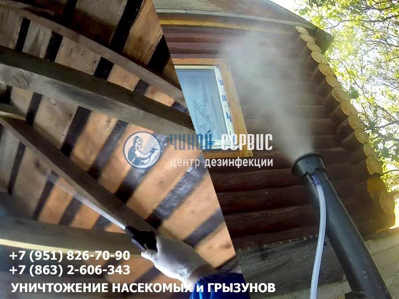 Борьба с короедом в деревянном доме
