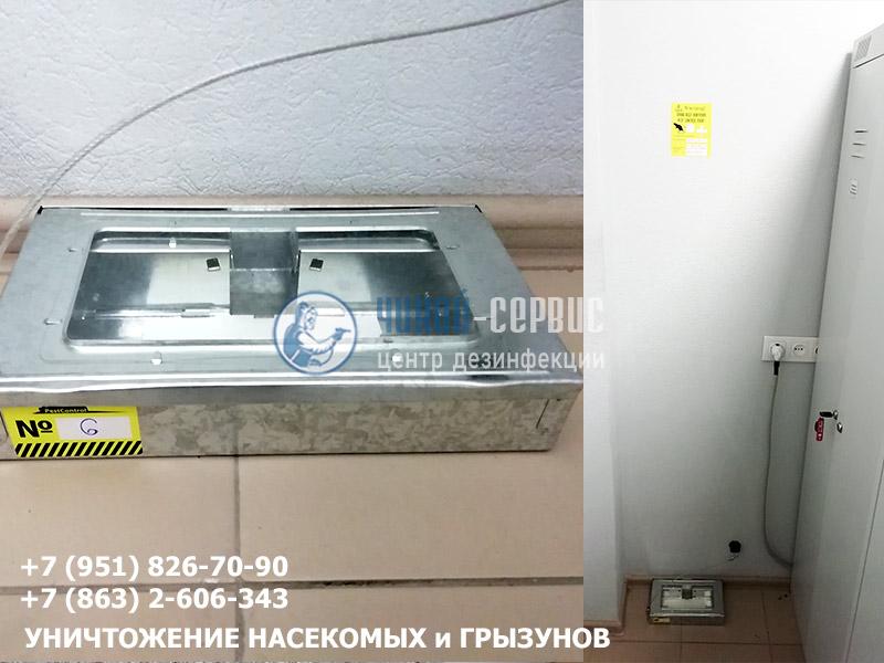 Дератизация помещений в Ростове-на-Дону и Ростовской области