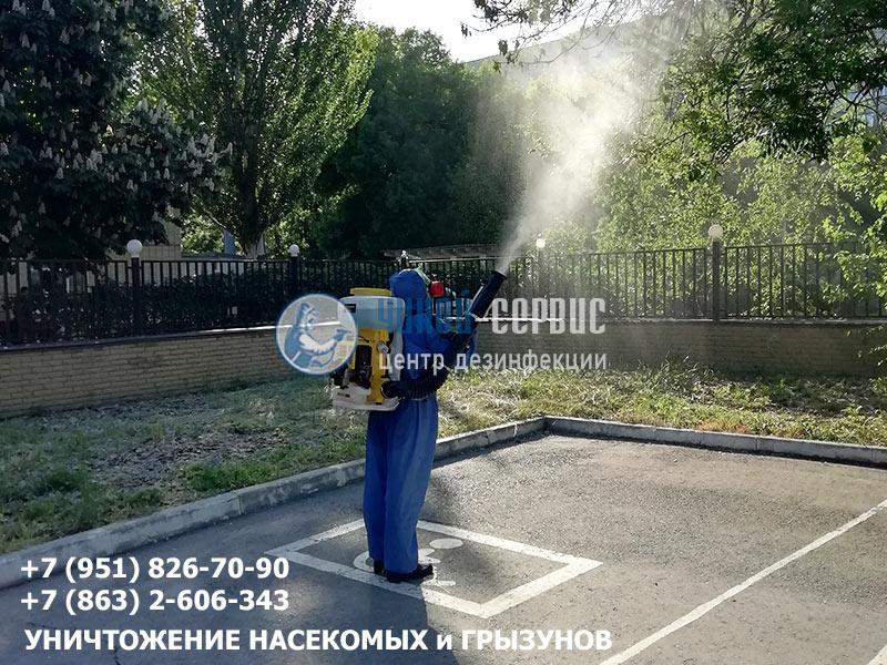 Как избавиться от гусениц в Ростове