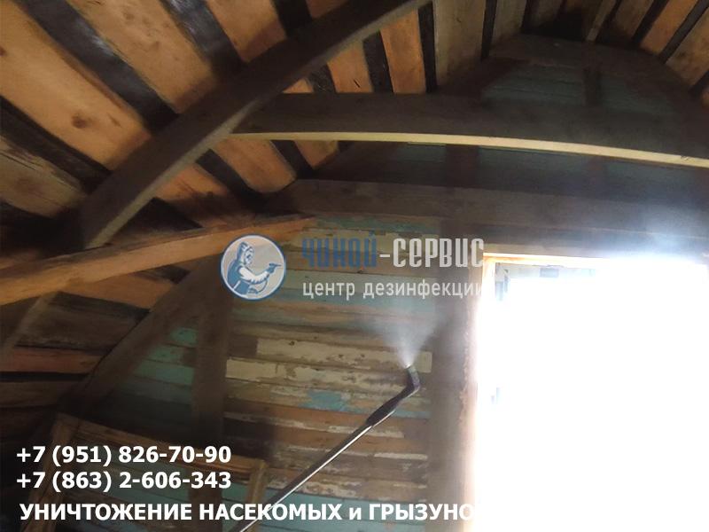 Уничтожение короеда в Ростовской области