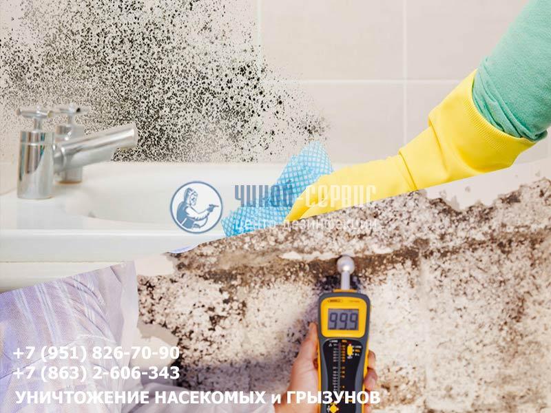Уничтожение плесени в ванной в Ростовской области