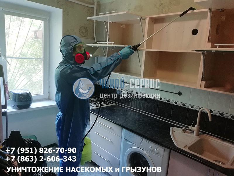 Как избавиться от домашних тараканов в Ростове