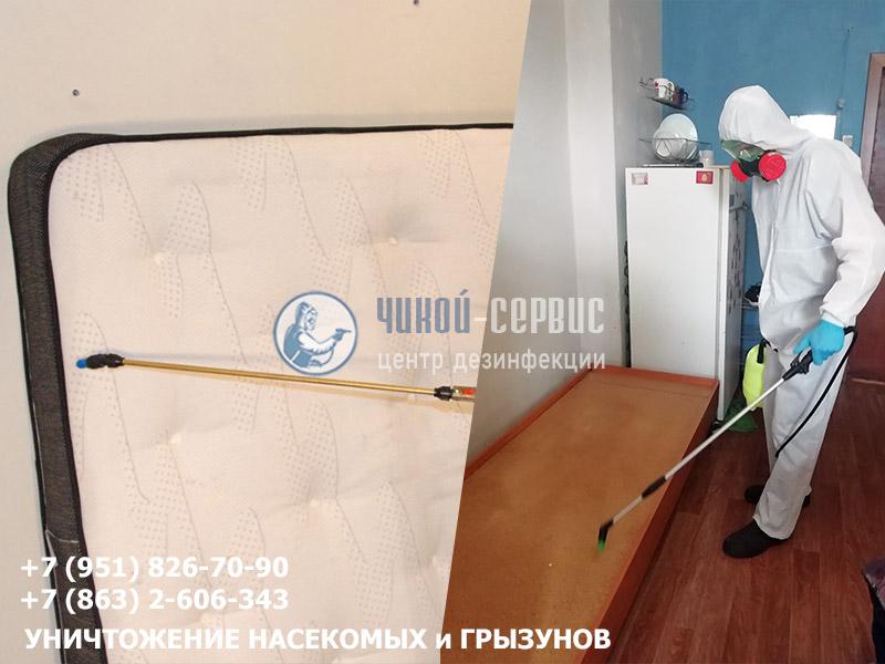 Дезинфекция от клопов в квартире в Ростовской области