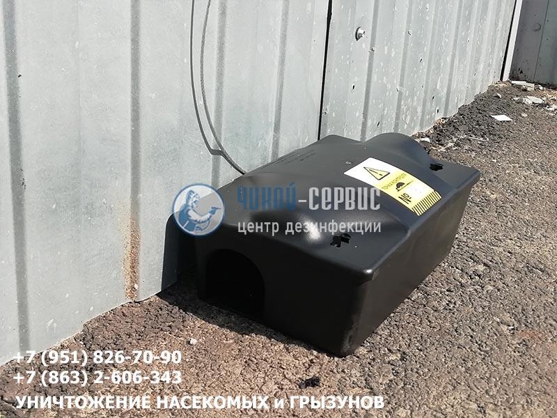 Уничтожение мышей и крыс в Ростове и Ростовской области