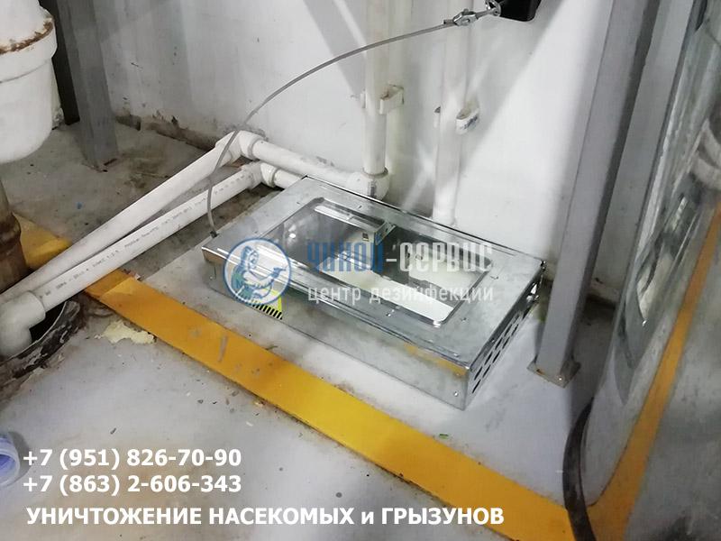 Дератизация объектов в Ростове от Чикой-Сервис