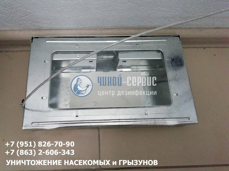Дератизация пищевых предприятий в Ростове и области