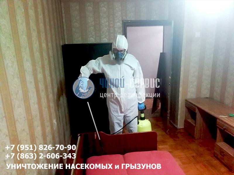 дезинсекция клопов в квартире в Ростове-на-Дону и области