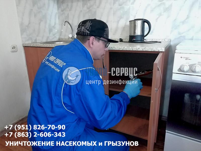 Уничтожение тараканов в квартире в Ростове