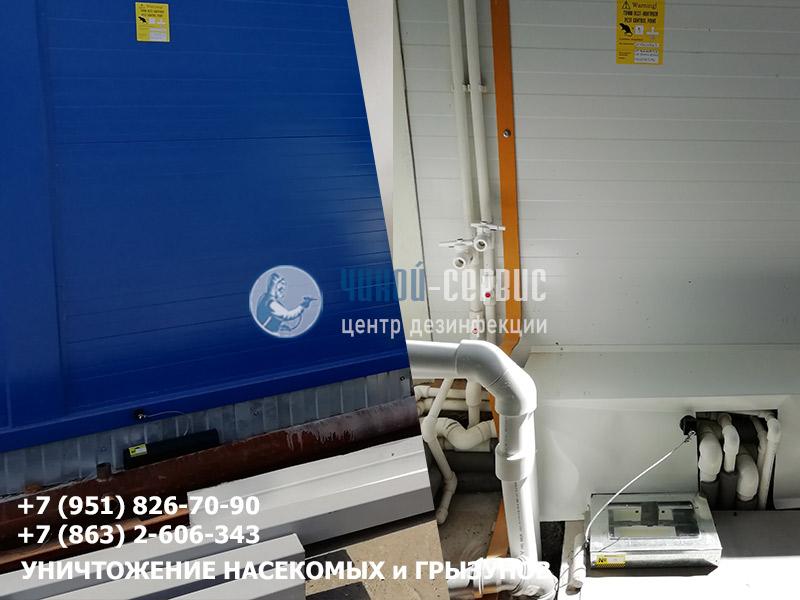 Дератизация производственных помещений в Ростовской области