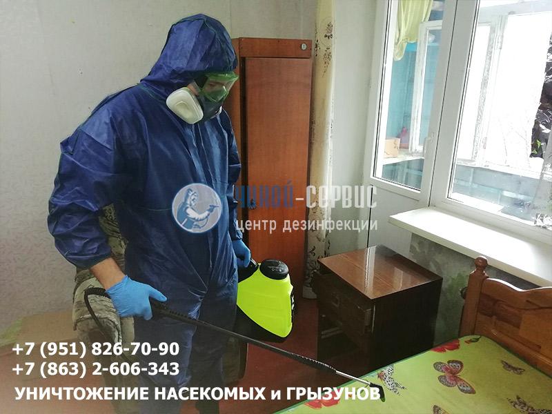 Как избавиться от клопов в квартире в Новочеркасске знают в Чикой-Сервис
