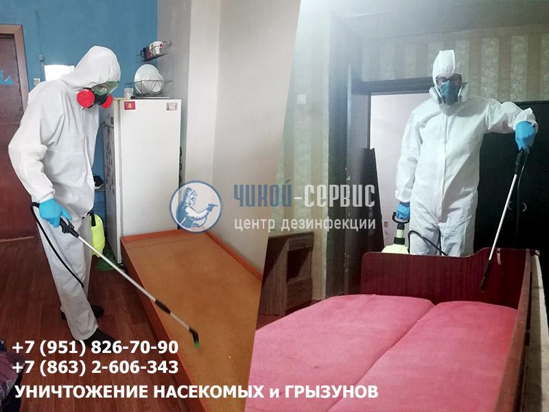 Уничтожение постельных клопов в Ростове-на-Дону и области