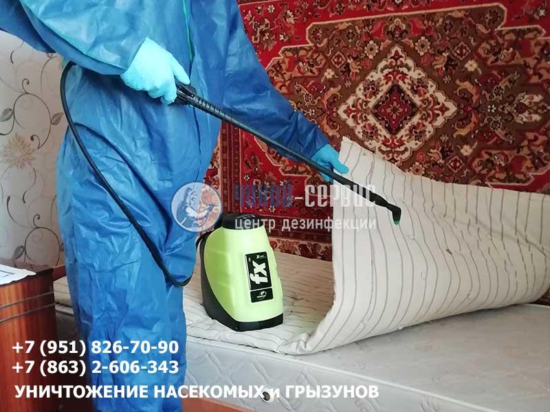 Как бороться с клопами в Ростове? Чикой-Сервис
