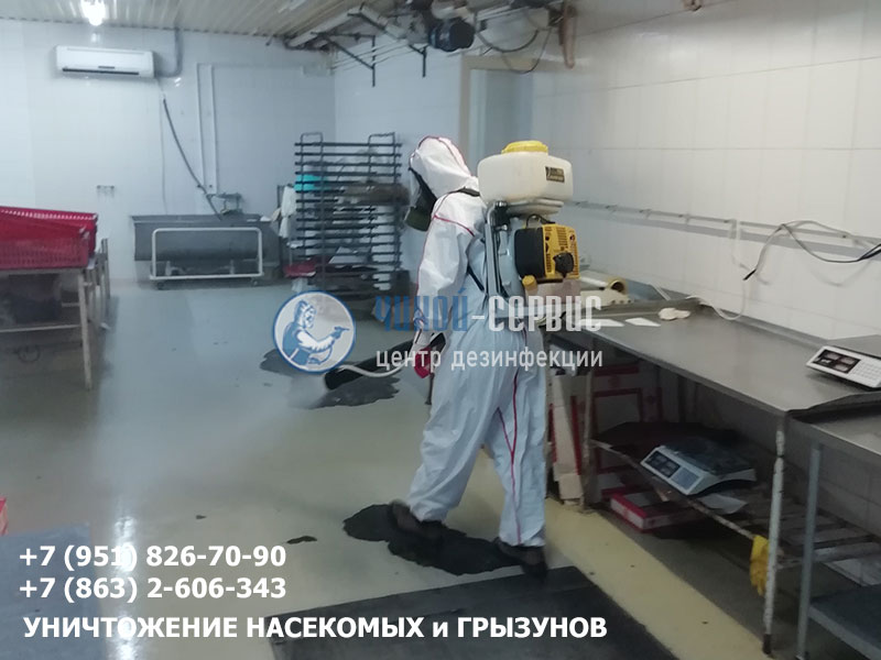 Уничтожение тараканов, блох центром дезинфекции Чикой-Сервис