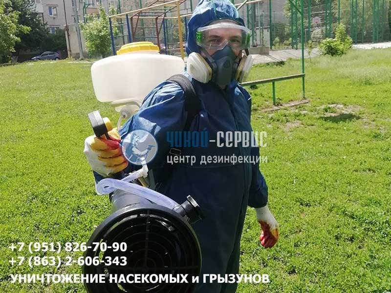 Профессиональное уничтожение муравьев в Ростовской области от Чикой-Сервис