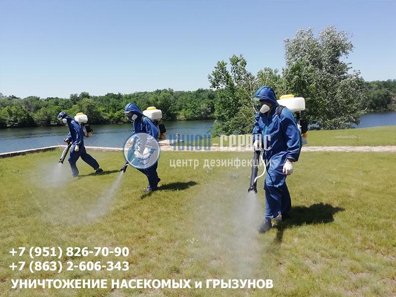 Акарицидная обработка в Новочеркасске специалистами центра Чикой-Сервис - фото