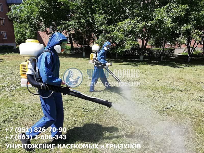 Дезинфекция, дезинсекция и дератизация в Новошахтинске от Чикой-Сервис