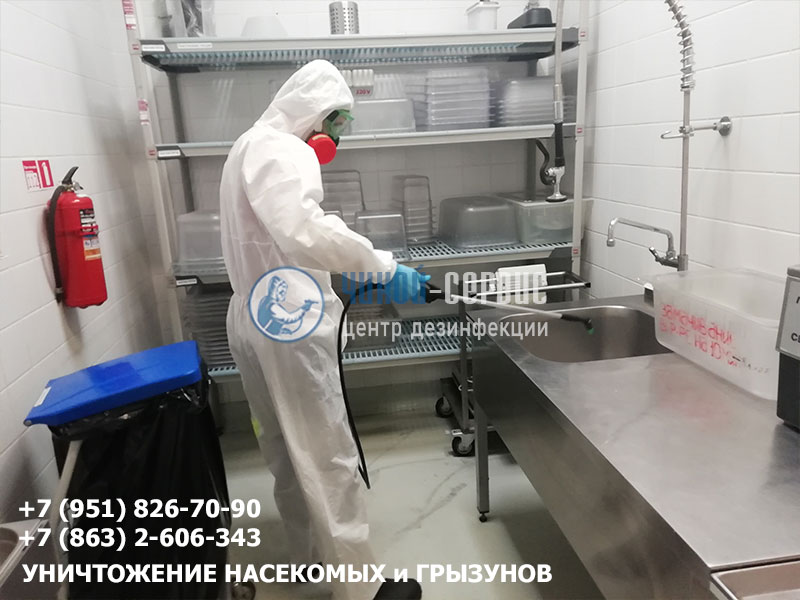 Дезинфекция предприятия в Новошахтинске центром дезинфекции Чикой-Сервис - фото