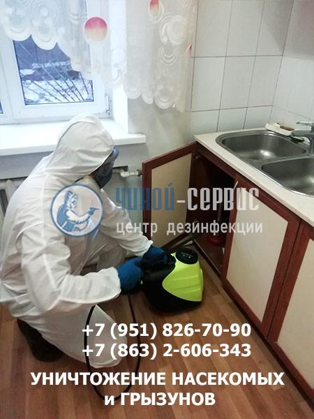 Дезинсекция в Батайске от тараканов - фото Чикой-Сервис