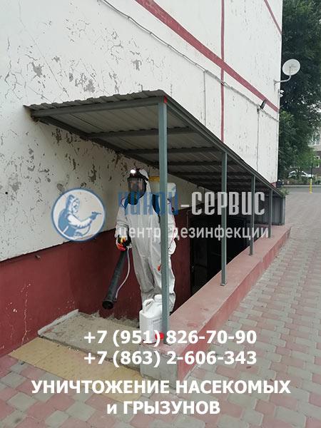 Обработка подвалов и дератизация в Аксае - фотография  Чикой-Сервис