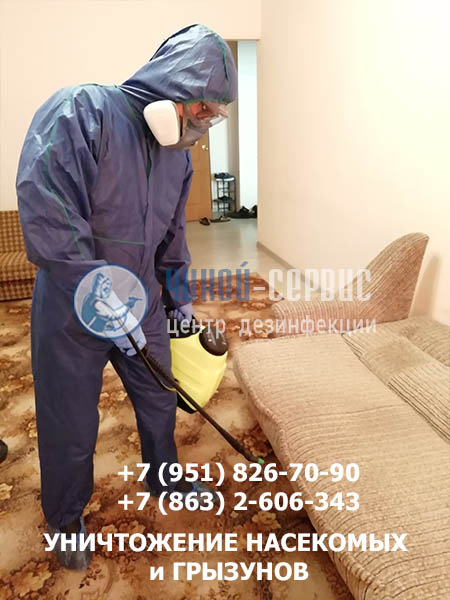 Профессиональная дезинфекция в Гуково - фото Чикой-Сервис