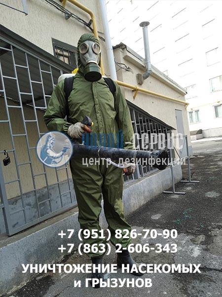 Высокоэффективная дезинсекция в Гуково - фото Чикой-Сервис