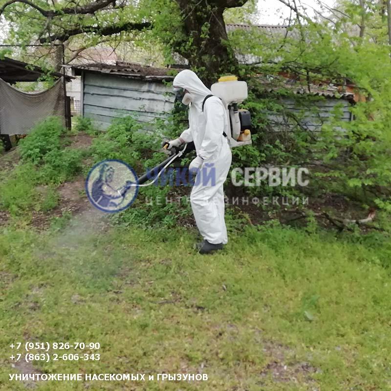 Оперативная акарицидная обработка от клещей в Донецке - картинка Чикой-Сервис