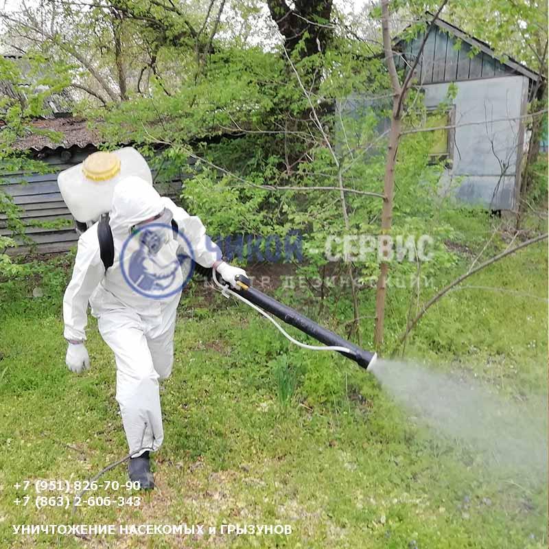 Акарицидная обработка против клещей в Таганроге - фото Чикой-Сервис