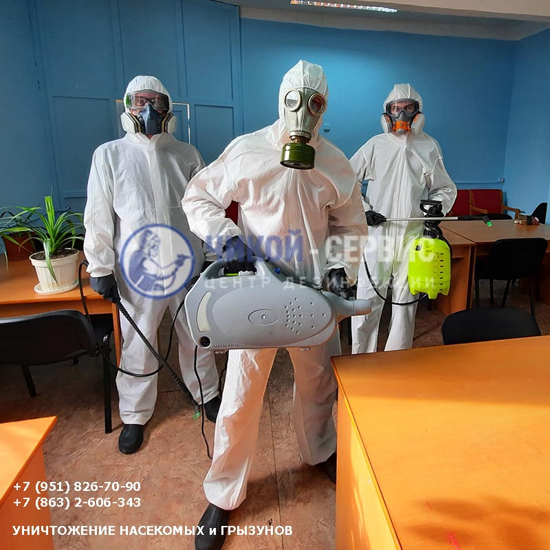 Картинка дезинфекции в Красном Сулине от Чикой-Сервис