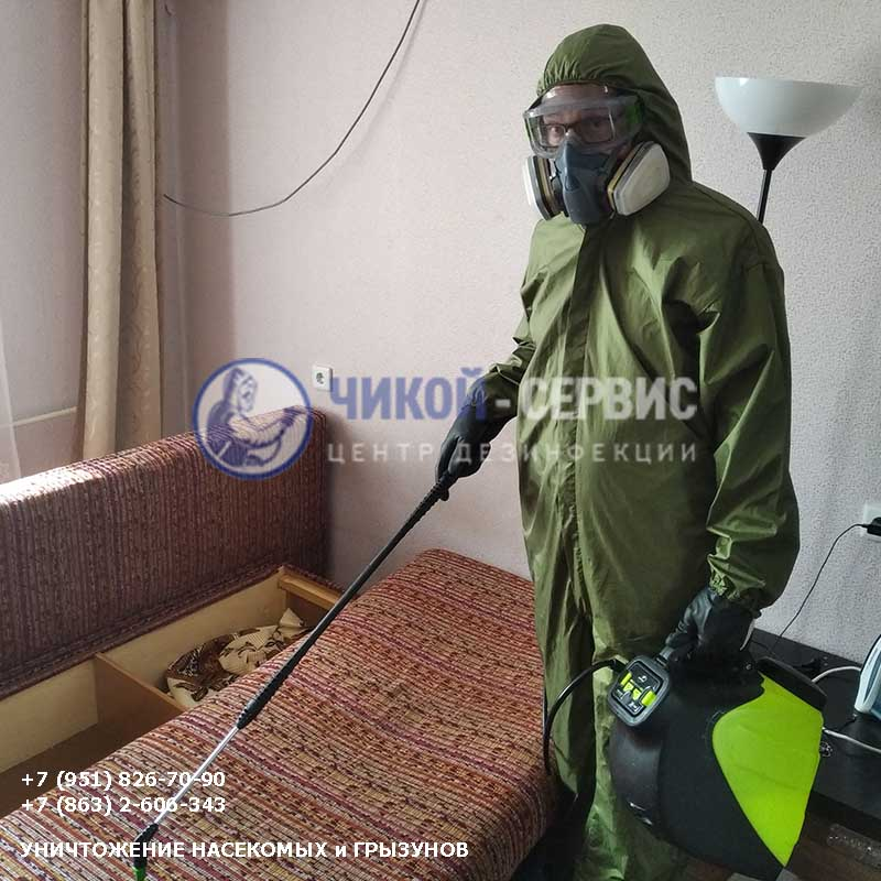 Профессиональная обработка клопов в Зернограде - фото Чикой-Сервис