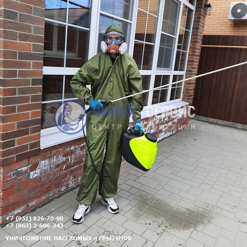 Картинка дезинсекции насекомых в Пролетарске от Чикой-Сервис