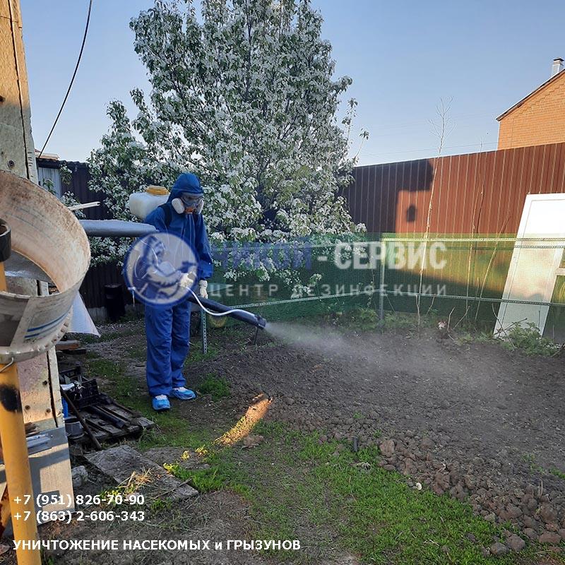 Акарицидная обработка от клещей в Константиновске - картинка Чикой-Сервис