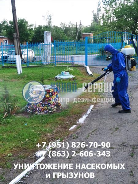 Акарицидная обработка против клещей в Цимлянске - картинка Чикой-Сервис