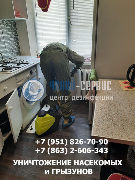 Обработка от тараканов в Цимлянске - фото центра дезинфекции Чикой-Сервис