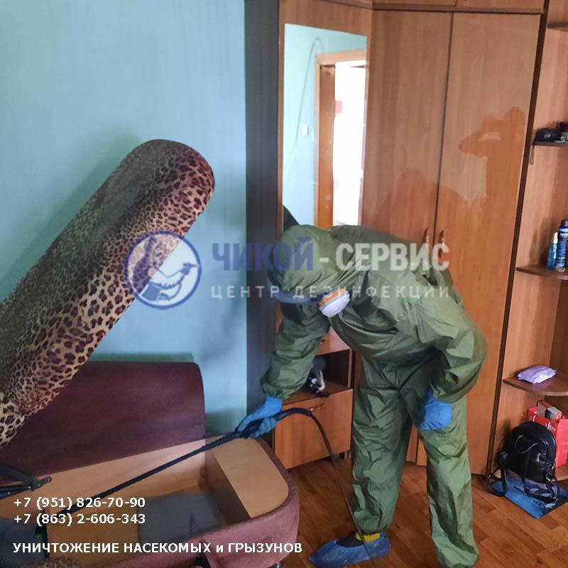 Профессиональная обработка от клопов в Константиновске - фотография Чикой-Сервис