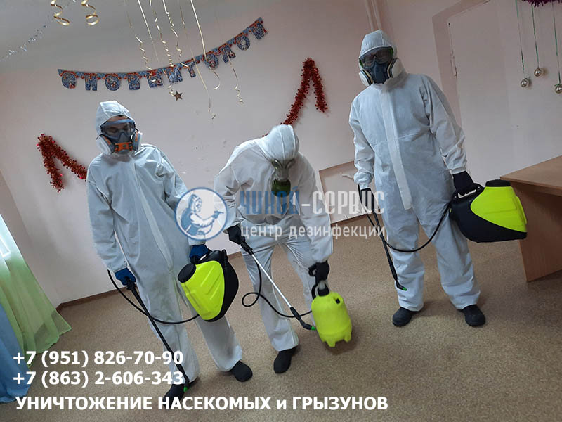 Эффективная дезинфекция фермы КРС в Ростовской области - фото Чикой-Сервис
