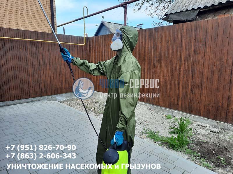 Фотография как избавиться от мух в доме от Чикой-Сервис